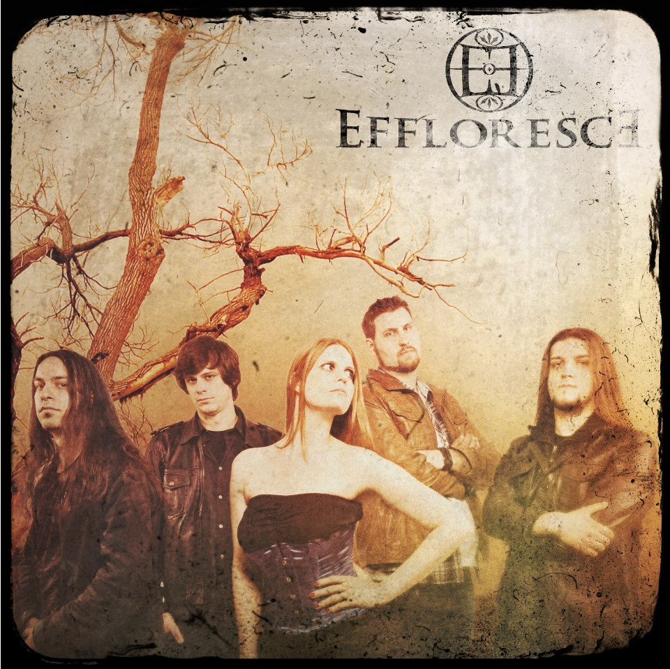 Treasure Hunt: Effloresce
