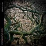 Desolation_Desoriented_cover