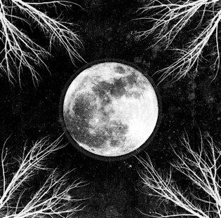 Corpus Christii – Pale Moon 5/6