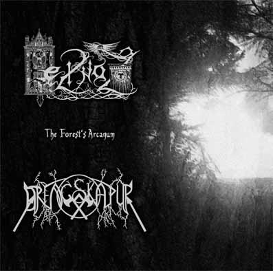 Drengskapur / Heilnoz – The Forest's Arcanum 4/6