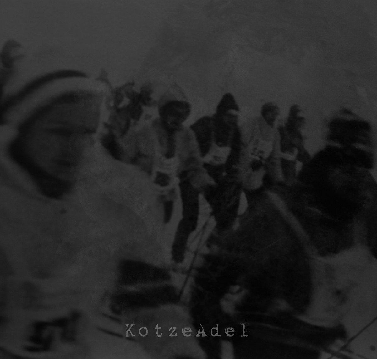 Animo Aeger – KotzeAdel 4/6