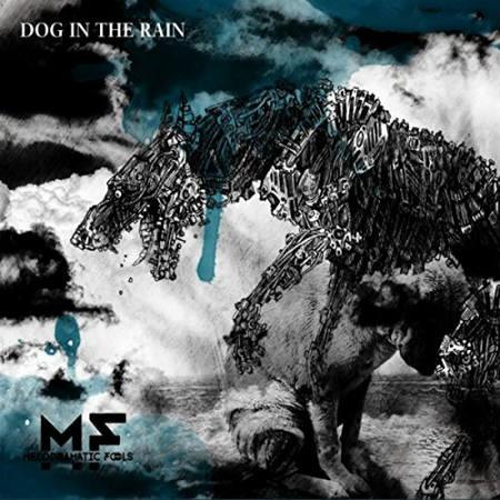 Melodramatic Fools – Dog In The Rain 4/6